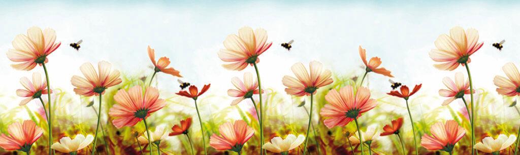 Скинали - Пчёлки